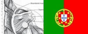 essaysCuppingDeficiencyPortugal